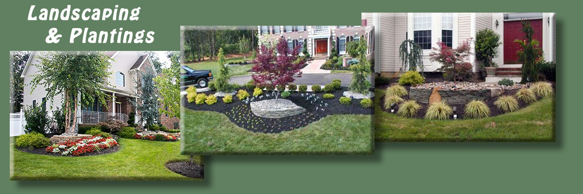 1-Landscaping & Plantings